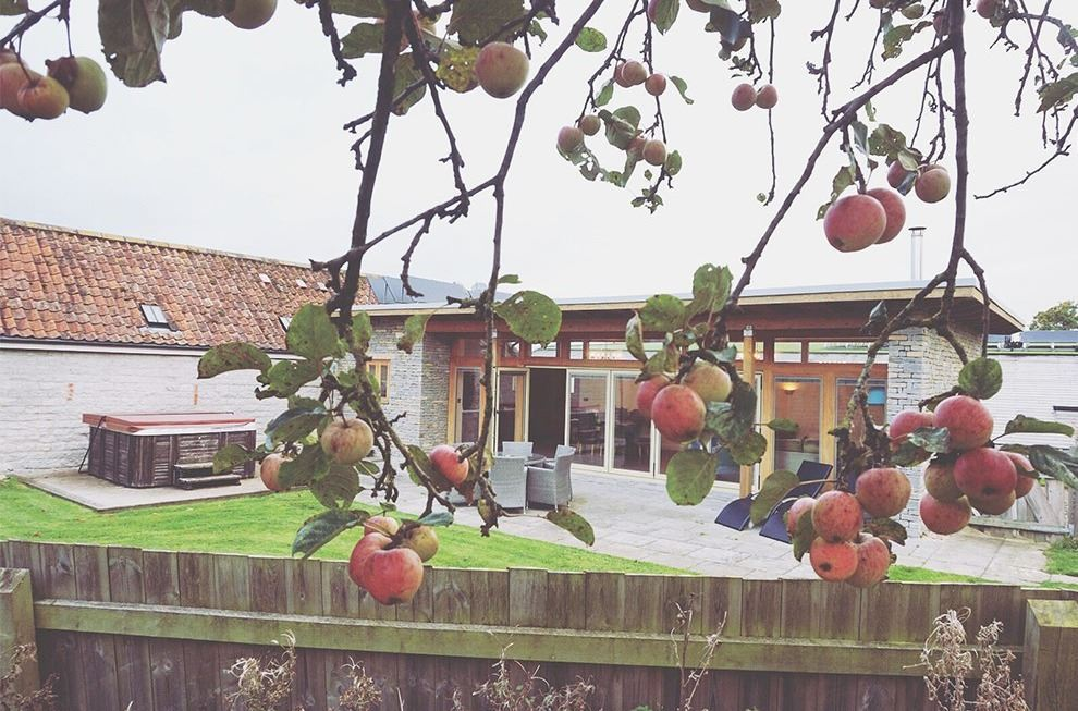 Ruth's stay at Swallow's Orchard